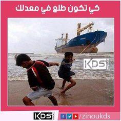 by zinou.kds