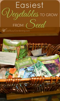 Starting vegetable seeds doesn't have to be hard or scary. Start with this list of vegetables that are easy to grow from seed.