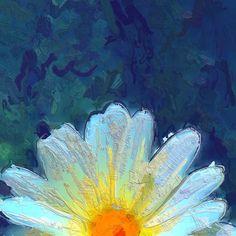 Flower Kissed Life by John Patsfield
