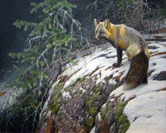 Robert Bateman Fox Crossing