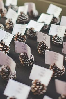 11 Evergreen Winter Wedding Decorations for That Chic Forest Feel - DIY escort card idea: Pinecones painted with snowy white tips - Rustic Wedding, Wedding Day, Wedding Reception, Wedding Hacks, Trendy Wedding, Wedding Seating, Reception Ideas, Reception Food, Wedding Rings