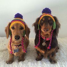 Okay.....now my girls need some hats!