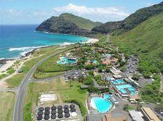Sea Life Park and Pacific Whaling Museum - (Oahu) Waimanalo, HI - Kid friendly activity reviews - Trekaroo