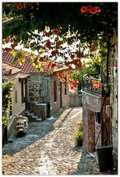 Molyvos, Lesbos Island, Greece | I want to travel to... | Pinterest