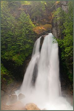 I have not yet, but sure want to get to Lady Falls in Strathcona Park... SOON. North  of Campbell River.