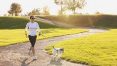 How to Turn Your Dog into Your Running Partner