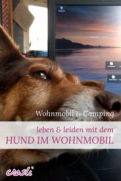 Camping Urlaub mit Hund im Wohnmobil? Geht ja noch. Wir leben mit zwei Hunden im Womo. Eine nicht ganz ernst gemeinte Abrechnung mit den Fellnasen ;-)