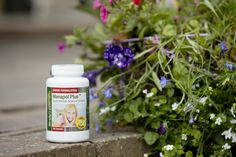 Menapol™ Plus is an herbal complex that may help to ease you through the often uncomfortable transitional period of the menopause.