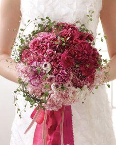 roze. bloem. wit. donker roze. groen. blad.