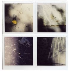Ed Fella - polaroid marks