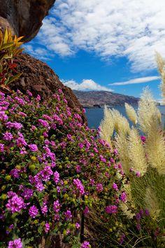 #Madeira, Portugal