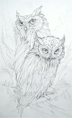 Owls ~ save for pyrography pattern