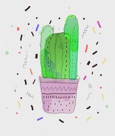 Cactus - Vasare Nar