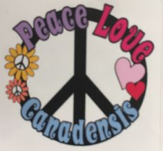 Camp Canadensis Peace!