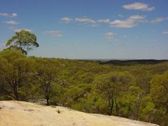 White Mountains National Park. Charleville to Townsville Queensland Outback road trip, Australia. Photo: cairnsunlimited
