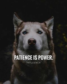 Patience is power.