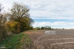 A view of newly ploughed field with trees, blue sky and clouds on the horizon, Essex, England.