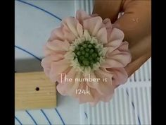 The flower is a Scabiosa Buttercream Flowers Tutorial, Piping Buttercream, Korean Buttercream Flower, Frosting Flowers, Buttercream Decorating, Cake Piping, Buttercream Flower Cake, Fondant Flowers, Sugar Flowers