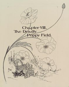 "Chapter VIII. ""The Deadly Poppy Field."" (ca. 1901)  Creator: Denslow, W. W. (William Wallace), 1856-1915 -- Artist  Additional Name(s): Baum, L. Frank (Lyman Frank), 1856-1919 -- Author"