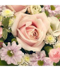 Posy Pink & White - A foliage edged posy arrangement in pink & white colours.