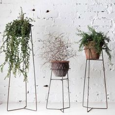 Pot Plant Stands - Clear coated steel by Trestle UnionClear coated steel