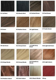 Hair Colour Chart Hair Images 2016 Palette - Schwarzkopf