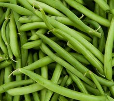 The Health Benefits of Green Beans Vegetable