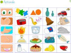 Five Senses Preschool, Body Preschool, Senses Activities, Fall Preschool, Kindergarten Science, Preschool Learning, Toddler Activities, Preschool Activities, Teaching Kids