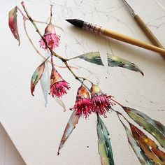 Try Your Hand At Different Watercolor Projects For Interesting Effects - Bored Art - Native Flower Art Watercolor Projects, Watercolour Tutorials, Watercolor Techniques, Botanical Drawings, Botanical Art, Watercolor Flowers, Watercolor Paintings, Watercolours, Watercolour Illustration