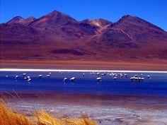 Los Hermosisimos Paisajes De Bolivia!