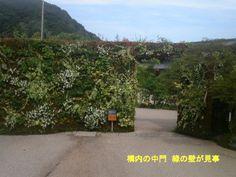 080902ishiharakazuhirogardenmuseum0