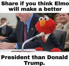 Elmo For President! He's definitely more savvy!