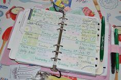 Week 4 used filofax planner 2016