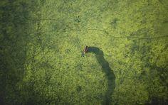 Piloto Tira Fotos De Bangladesh Do Avião