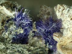 Elyite, Pb4Cu(SO4)O2(OH)4·H2O, Altemann cliff, Sehringen, Badenweiler Pb mining District, Badenweiler, Black Forest, Baden-Württemberg, Germany. Fov 2,71mm. Copyright © Gerhard Niceus