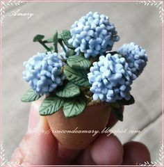 how to: hydrangea