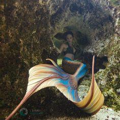 Fantasy Mermaids, Real Mermaids, Mermaids And Mermen, Silicone Mermaid Tails, Arte Van Gogh, Mermaid Pictures, Mermaid Tale, Sea Witch, Merfolk