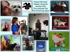 Nationally Ranked Groomers at The UpScale Tail, Pet Grooming Salon, Naperville, IL www.theupscaletail.com