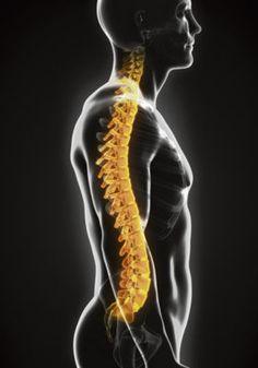 Rückenschmerzen  Operation oder konservative Behandlungswege?  Eifel