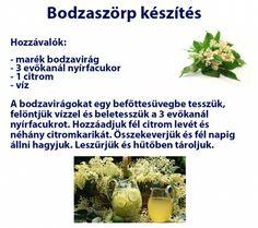 Egészséges bodzaszörp készítés Herbs, Drinks, Health, Drinking, Beverages, Health Care, Herb, Drink, Beverage