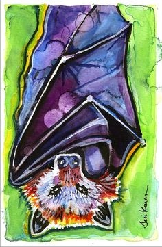 Fanihi!!! :) Fruit Bat Watercolor Painting Print by CanyonWrensNest,
