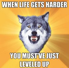 Huh.  Kind of like this.  Harder isn't always bad.  Courage Wolf is so smart
