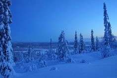 Blue moment in winter in Sirkka village in Levi, in the municipality of Kittilä, Finnish Lapland. Photo by Levi Tourist Office. Autumn Leaf Color, Polar Night, Tourist Office, Midnight Sun, Winter Beauty, Filming Locations, Beautiful Landscapes, Finland, Winter Wonderland