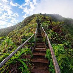Follow Naked Planet founder @stephenvalido for more!  Bucketlist? Stairway to Heaven, Oahu by @travisburkephotography #tripsider