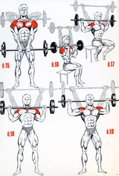 Lean Muscle Fast - 8 Foolproof Tips For Quick Muscle Grow The Fitness era: BEAST shoulder workout!The Fitness era: BEAST shoulder workout! Fitness Workouts, Fitness Tips, Fitness Motivation, Fitness Style, Sport Motivation, Fitness Goals, Health Fitness, Muscle Fitness, Mens Fitness