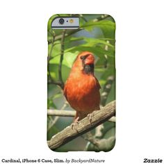 Cardinal, iPhone 6 Case, Slim. Barely There iPhone 6 Case