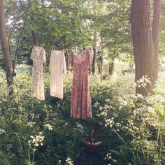 Image about beautiful in clothes by Lily *secret* Theme Nature, Photo Images, Country Life, Country Roads, Farm Life, Dream Life, Ethereal, Scenery, Lily