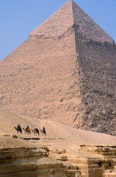 Pyramid and 4 camels