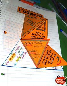Tout sur l'adjectif pour les apprenants visuels et kinesthésiques: cahiers interactifs