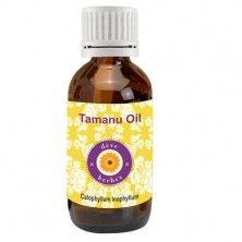 Pure Tamanu Oil 50ml (Calophyllum inophyllum)